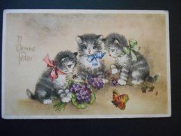 Chatons Gris Et Blanc Avec Un Papillon Des Violettes - N° 44341 - Chats