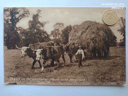 Oben In Cirencester Park, With Haycart, 1910 - Other
