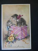 Chatons Gris Et Blancs Avec Boîte Cadeau Et Fleurs - N° 44347 - Chats