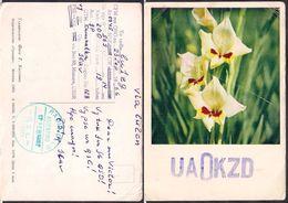 QSL UA0KZD Moscu Rusia To LU1ZG Antartida Argentina - 23/09/1966 - Cygnus - Radio
