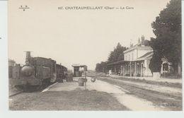CPA CHÂTEAUMEILLANT (18) LA GARE - TRAIN à VAPEUR - Châteaumeillant