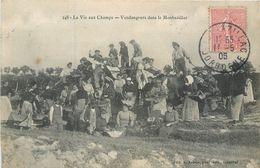 CPA 24 Dordogne La Vie Aux Champs - Vendangeurs Dans Le Monbazillac 1906 Vignobles - Viticulteurs - Vin - Andere Gemeenten