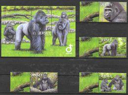 Jersey 2012 MiNr. 1671 - 74 Bl. 103 Durell Wildlife Park ZOO Mammals Western Lowland Gorilla 4v + S\sh MNH** 9.50 € - Jersey