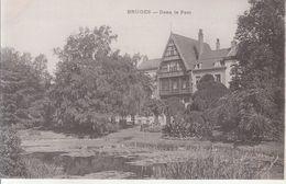 Bruges - Dans Le Parc - Brugge