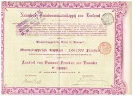 Titre Ancien - Naamloze Tuinbouwmaatschappij Van Linthout - Société Anonyme Horticole De Linthout. -Titre De 1904 - Rare - Agriculture