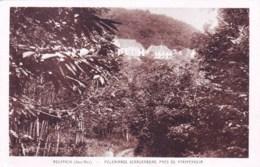 68  -  ROUFFACH -  Pelerinage Schauenberg Pres De Pfaffenheim - Rouffach