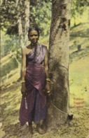 Ruber Tapper  Ceylon Colorisée RV - Sri Lanka (Ceylon)