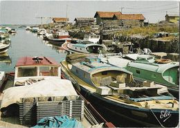 GUJAN-MESTRAS - Le Port Du Canal - Péniche - Gujan-Mestras