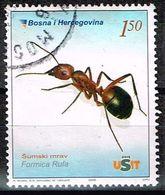 Bosnien-Herzegowina 2006,Michel# 439 O Red Wood Ant (Formica Rufa) - Bosnia And Herzegovina