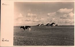! Alte Ansichtskarte Hiddensee - Hiddensee