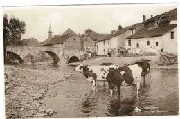 MARTELANGE Le Pont Romain.M.Prom-Goetz.Martelange - Cartoline