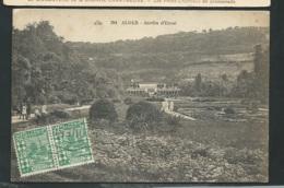 N°294 -Alger - Jardin D'essai  Mbl 84 - Algiers