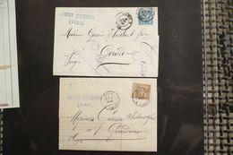 Perfin Lochung Sage 15c Et 30c  Perforé CL Sur 2 Lettres Crédit Lyonnais  épinal 1882 Et 1884 - France