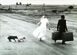 Mariage Wedding Cochon Pig Valise  The First Day - Recepciones