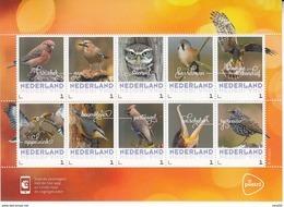 Nederland Persoonlijke Zegel Vogels,bird, Sheet O.a. Gaai, Steenuil, Kiekendief, Spreeuw; Jay, Owl, Harrier, Starling - Nuevos