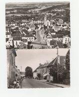 2 CPSM:NANTEUIL LES MEAUX (77) VUE,RUE GALLIÉNI...ÉCRITES - Francia