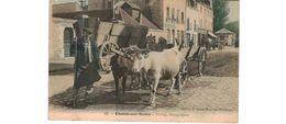 Chalon Sur Saône  / Attelage Bourguignon - Chalon Sur Saone