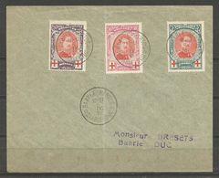 1915 - CROIX-ROUGE - COB N°  132 à 134 Oblitérés Sur  Lettre  - Envoi De BAARLE-HERTOG - 1914-1915 Red Cross