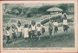 Rice Harvest Rijstoogst Philippines Philippinen Filipinas Philippijnen Missionary Mission Missie Van Scheut CPA Natives - Philippines