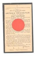 Doodsprentje - Mvr Antonia DECOSTER Weduwe Van H. Vander Borght - ERPS-QUERBS 1858 / 1932 - Todesanzeige