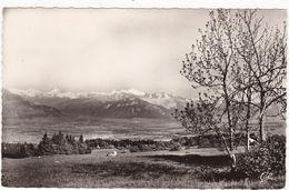 Haute Savoie : LE SALEVE : Vue Panoramique Sur La Chaine Du Mont-Blanc ( C.p.s.m. - Glacée - Photo Vérit. ) - Religion - - France