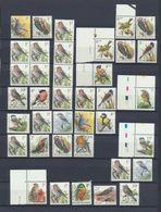 BIRDS By Buzin - Lot De Timbres MNH XX 260 BEF - Colecciones & Series