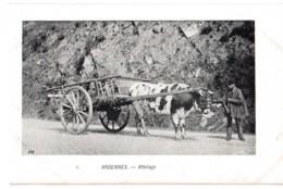 Ardennes - Attelage - édit. V.E.D. 192 + Verso - Belgique