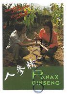 Publicité Panax Ginseng Et Melapi, Miel Et Gelée Royale - Calendriers