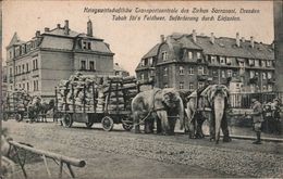 ! Alte Ansichtskarte Dresden, Zirkus Sarrasani, Circus, Elefanten, Elephants, 1. Weltkrieg - Dresden