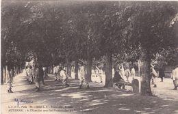 89. AUXERRE. CPA .MILITARIA.  A L'EXERCICE SOUS LES PROMENADES DU TROU POINCHY - Auxerre