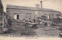 Usine D'Audierne Conserve Poissons Cour Et Façade De L'usine - Audierne