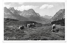 6580  ST. CHRISTOF  A. A. - BLICK VOM ARLBERG 1938 - St. Anton Am Arlberg