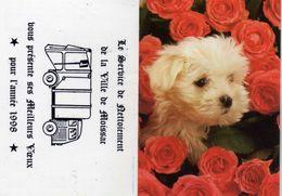 Service De Néttoiement De La Ville De Moissac Présente Ses Meilleurs Voeux - Chien Roses - Grand Format : 1991-00