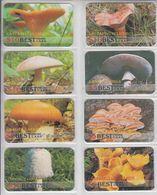 MUSHROOM SET OF 16 PHONE CARDS - Alimentación