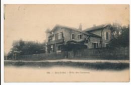 CPA 77 BOIS LE ROI Carte Rare Villa Des Chimères - Bois Le Roi