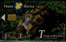 SPAIN 1999 PHONECARD TURTLES USED VF!! - Tartarughe