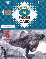 BAHAMAS ISL.(chip) - Great Iguana(BAH C24b), Medium Number In The Box, Chip GEM1b, Used - Bahamas