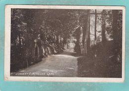 Small Old Postcard Of Vinchelez Lane,Jersey,Channel Islands,K95. - Jersey