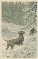 Illustration  Chien Teckel Dans La Neige    N 2710 - Cani
