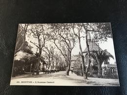 48 - MENTON L'Avenue Carnot - Menton