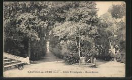 CPA Bagnols-sur-Céze, Allée Principale, Mont Cotton - France