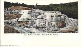 Yellowstone Park Mammoth Hot Springs RV Private Mailing Card - Estados Unidos