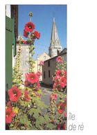 17 - Ile De Ré - Ruelle Aux Roses Trémières Devant L'église - Ile De Ré
