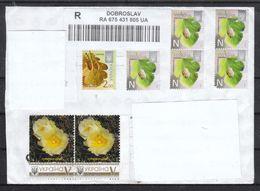 Ukraine,  R-Brief, Gelaufen, Kaktus Maihuania / Ukraina, Registered Cover, Cactus Maihuania - Sukkulenten
