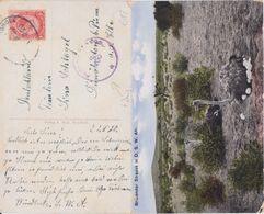 Dt Kolonien Deutsch Südwestafrika DSWA Brit Besetzung Zensur Kte Windhuk 1920 - Colonia: Africa Sud Occidentale