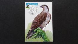 """BUZIN - Vignettes Distributeurs : Timbres Numéro ATM129S12 """"Balbuzard Pêcheur"""" 4 Cartes - Maximum Cards"""