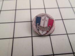 316a Pin's Pins / Beau Et Rare / THEME : ASSOCIATION / EPEE BOUCLIER TRICOLORE LE SOUVENIR FRANCAIS Le Souvenir De Quoi? - Associations
