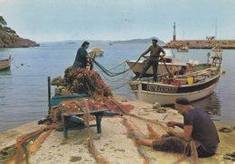 Presqu'ile De Giens (83) - Scène De Pêche Au Port De Niel - Hyeres