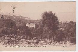 ALPES MARITIMES - 98 - CAP ANTIBES -  Vue Sur La Pointe Du Cap - Antibes