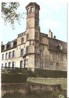 62 ARQUES Cpsm Le Chateau - Arques
